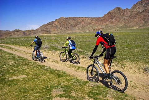 Mountain Biking Hire